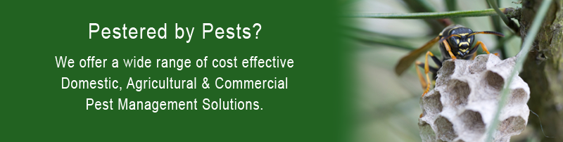 Lincoln & District Pest Control Services